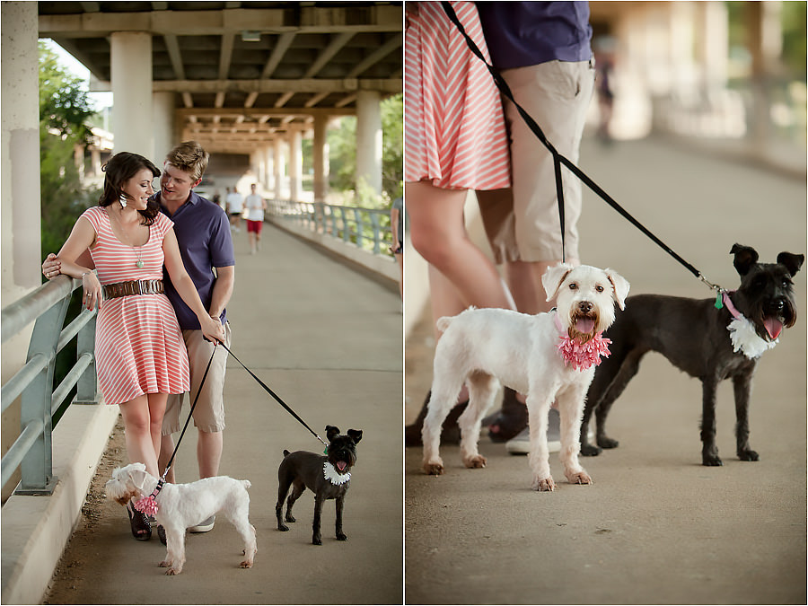 zilker park pedestrian bridge engagement portraits with two dogs